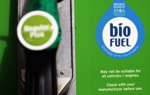 biofuel sticker