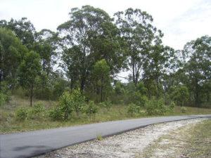 Road side biofuel plants