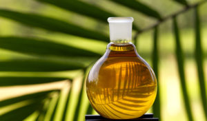 Palm oil prices following crude oil's upward trend