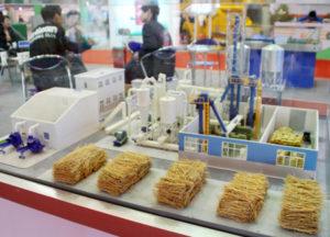 biofuel model china