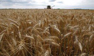 biofuel tax credit legislation