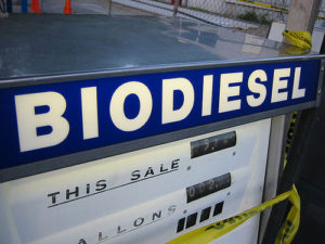 Biofuel fuel pump