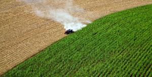 Engineered Yeast Boosts Biofuel Production